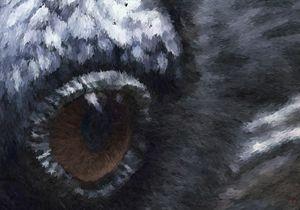 Eye of the Raven - Joseph Heath