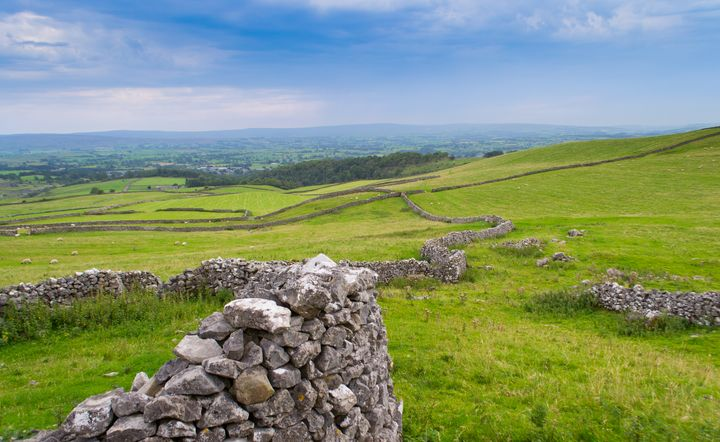 Dry stone wall - Russell Field