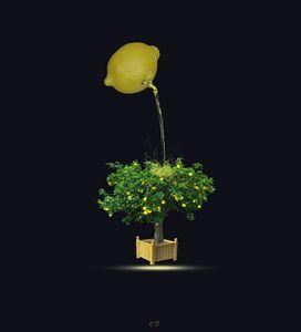 le citron arroseur - CF