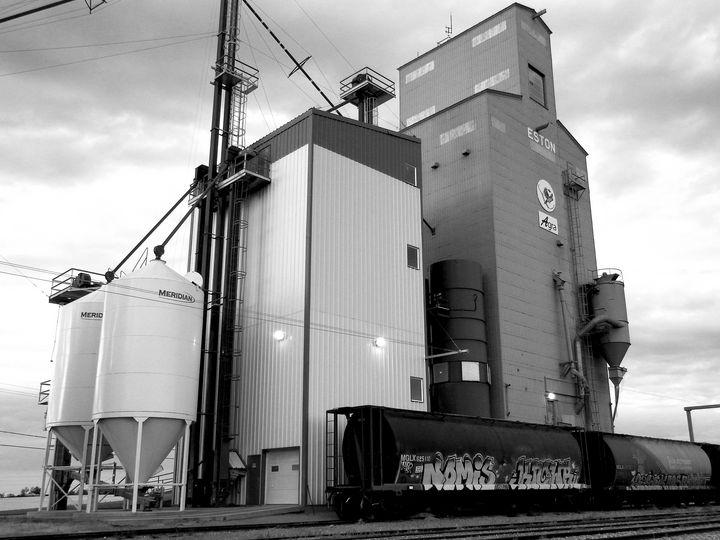 Grain Elevator in Black and White - Deb Johnston