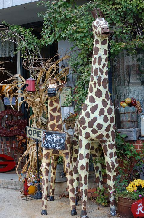 Giraffes - Lynn Murphy