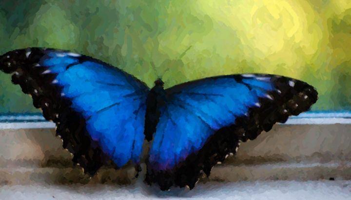 Blue Butterfly Impression - Lynn Murphy