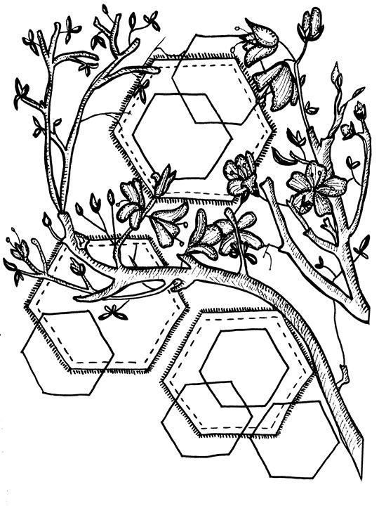 // Hexagonal // - MajesticPaula