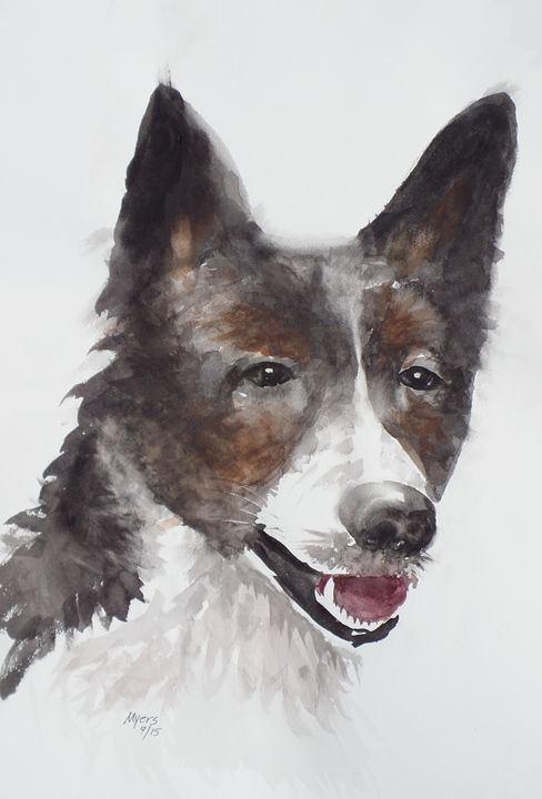 Canaan Dog,  Original Watercolor - David K. Myers Watercolor/ Photo Gallery