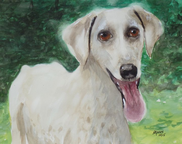 Shelter Dog 2, Original Watercolor - David K. Myers Watercolor/ Photo Gallery