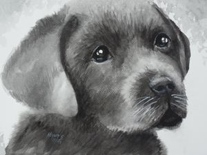 Labrador Puppy, Original Watercolor - David K. Myers Watercolor/ Photo Gallery