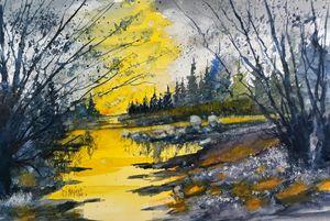 Michigan Wetland by David K Myers