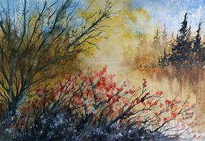 Spring by David K Myers