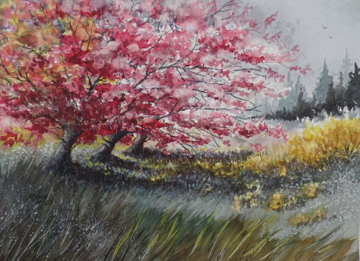Maple & Forsythia - David K. Myers Watercolor/ Photo Gallery