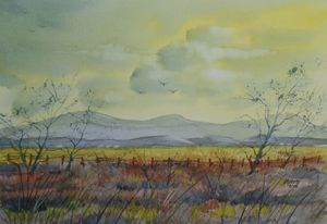 Golden Fields - David K. Myers Watercolor/ Photo Gallery