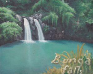 Bunga Falls - jazreelm