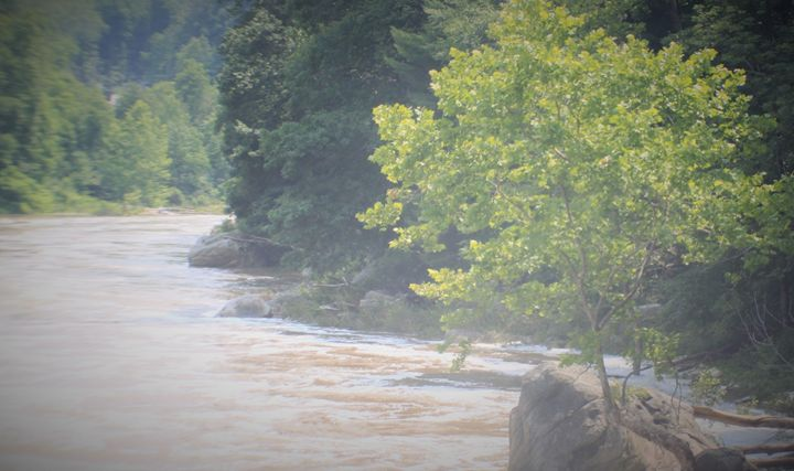 Youghiogheny River landscape - Jessica Roberto