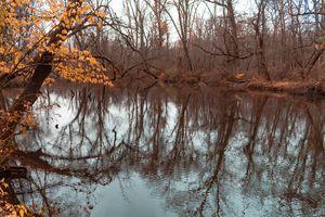 Stony Brook Autumn - Richmanphotoart.com