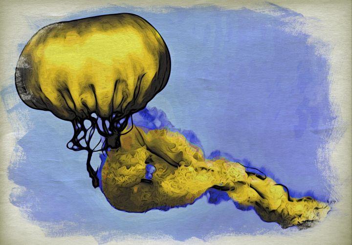 Jellyfish - Richmanphotoart.com