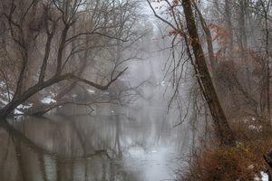 Stony Brook in Fog