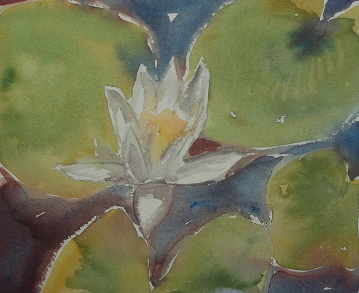 A Lonely waterlily - Abstract paintings