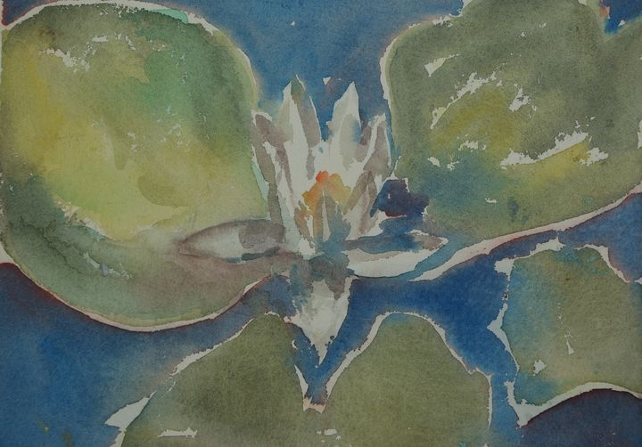 Water lily shines - Abstract paintings