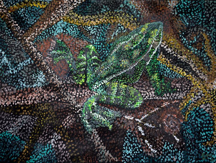 Frog Fossil - Tobias