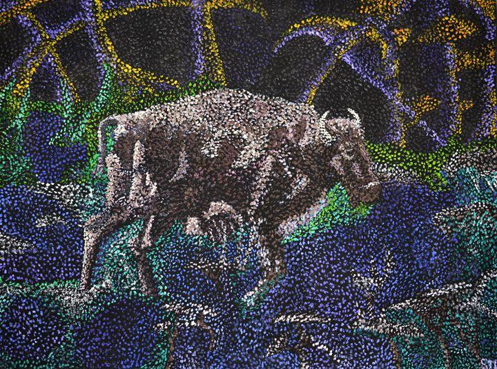 Water Buffalo - Tobias
