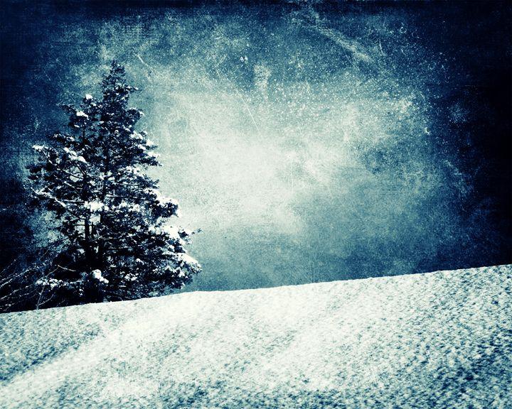 Christmas Tree Background, Beautiful - Fantom66