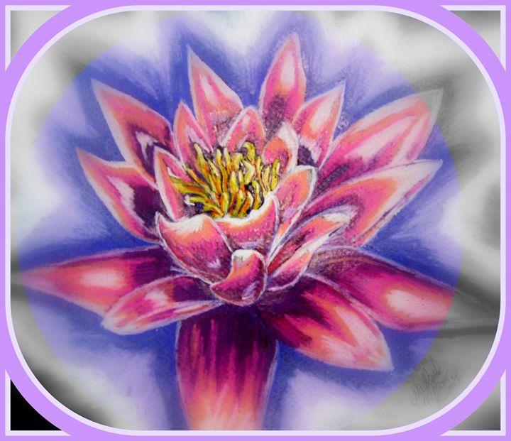 The Lotus - THE Wonderful Art of Sloppy Angel