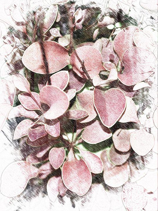 Flourishing - Colors of My World