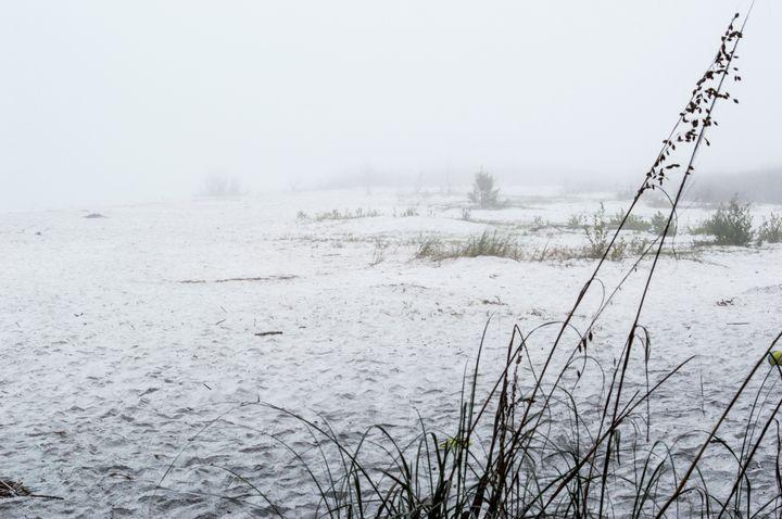Beach Fog - Welborne Fine Art