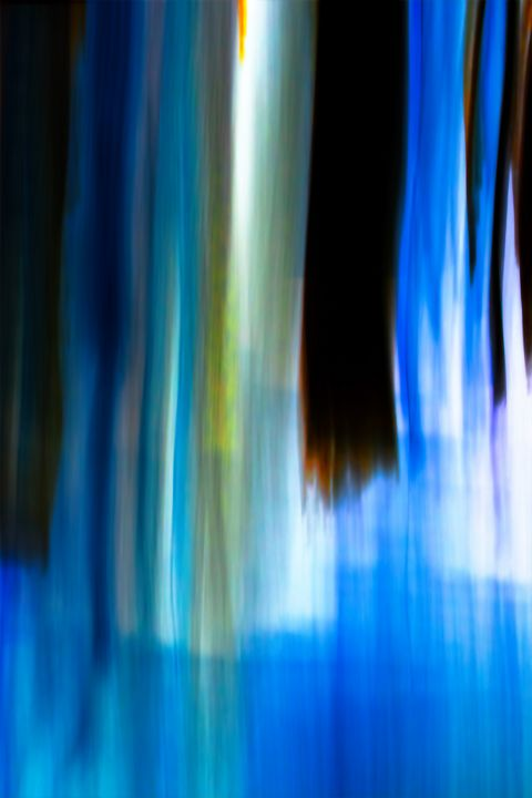 Moving Trees 25 Portrait Format - Welborne Fine Art