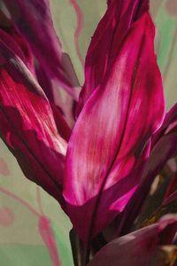 Red Ti #10 - Welborne Fine Art