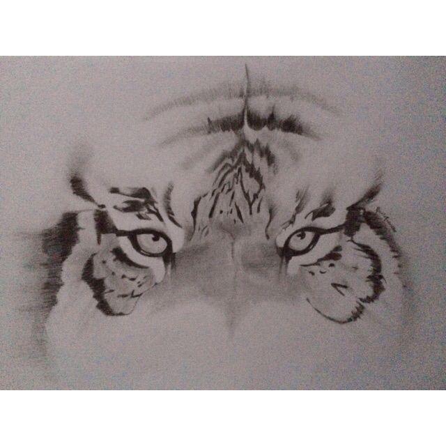 The tiger - Nicole Traballo
