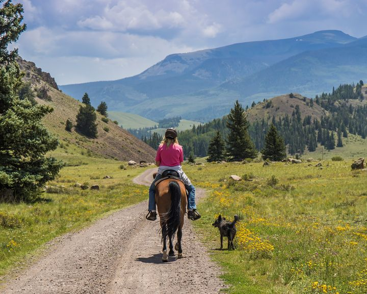 Horseback in the Mountains - Aspen Willow Fine Art Photography Gallery
