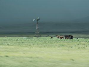 Ranch on the Prairie