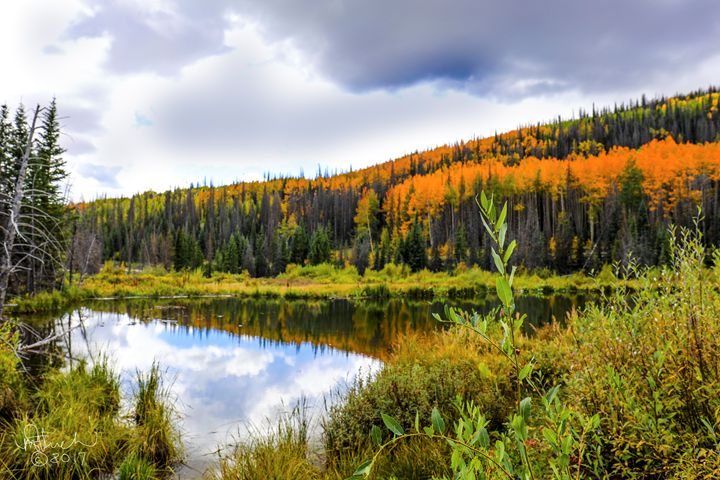 Mountain Lake in the Fall - Aspen Willow Fine Art Photography Gallery