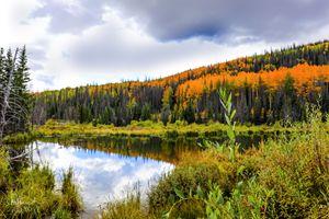 Mountain Lake in the Fall