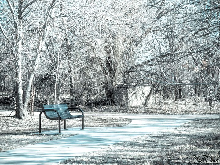 Alone in the Park - Aspen Willow Fine Art Photography Gallery