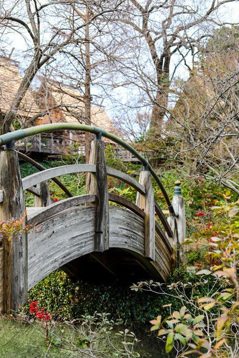 Rainbow Bridge - Aspen Willow Fine Art Photography Gallery