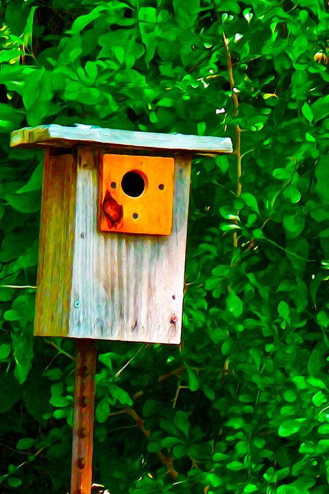 Bird House - Home Sweet Home - Aspen Willow Fine Art Photography Gallery