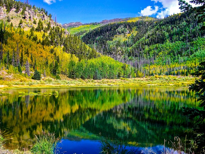 Beaver Pond - Aspen Willow Fine Art Photography Gallery