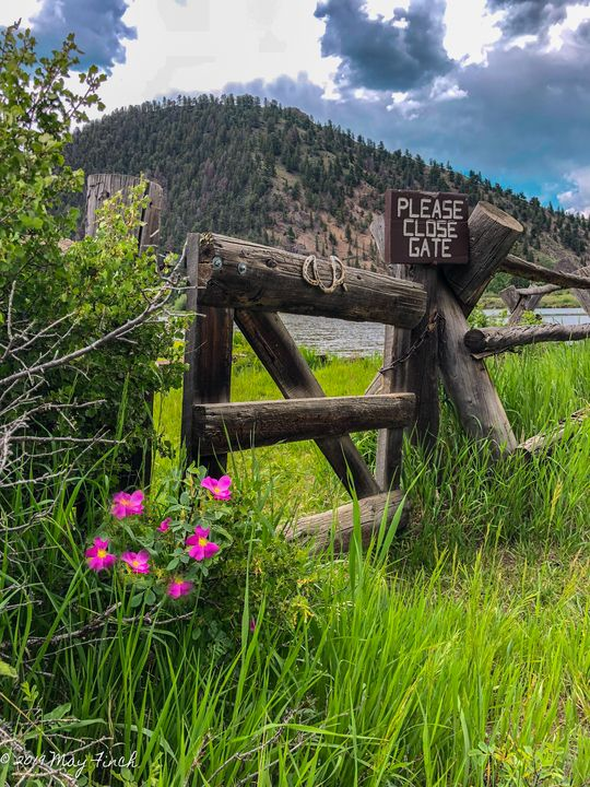 Please Close Gate - Aspen Willow Fine Art Photography Gallery