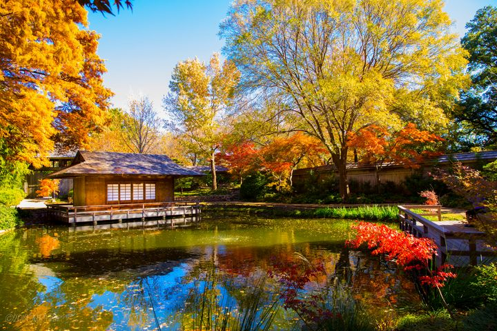 Tea House on the Pond - Aspen Willow Fine Art Photography Gallery