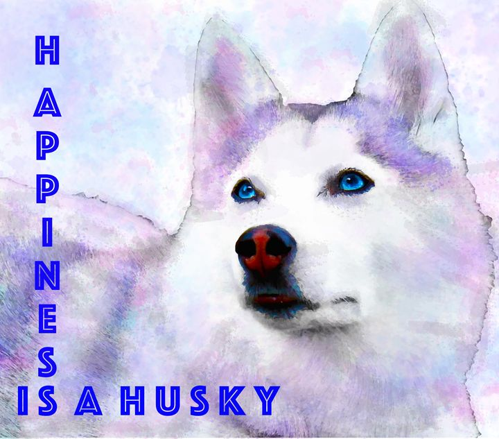 Happiness is a Rainbow Husky - Aspen Willow Fine Art Photography Gallery