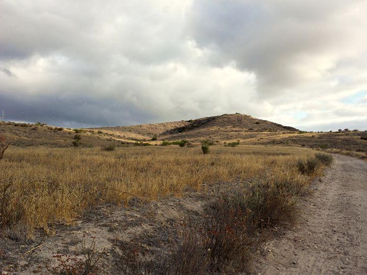 Grassland Walk in Mission Trails - Eveoak