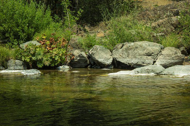 Squaw Creek - Flashbulb Foto