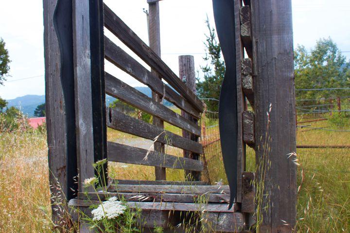 Old Wooden Wagon - Flashbulb Foto