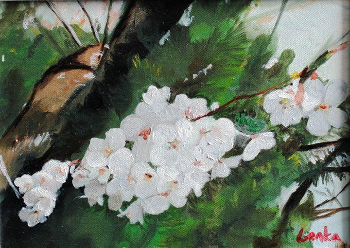 Cherry Blossom Cluster - Lenka Graner's Paintings