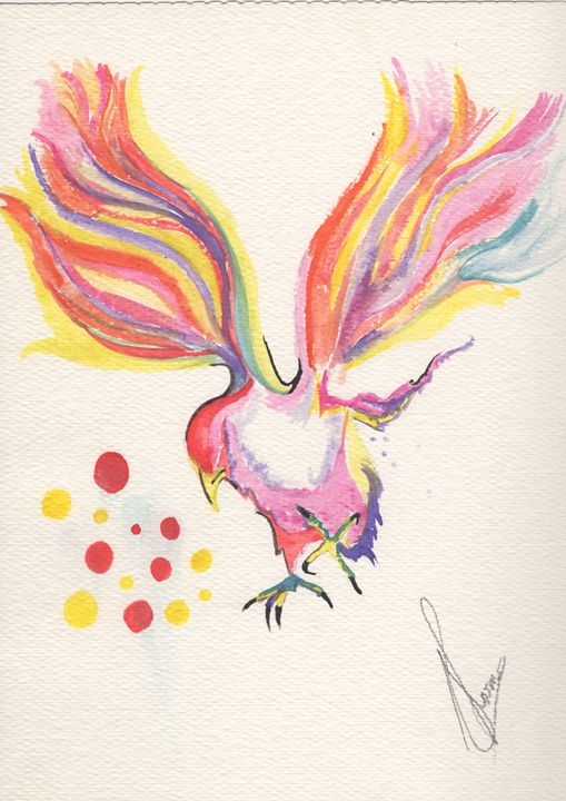 canary - Augustya