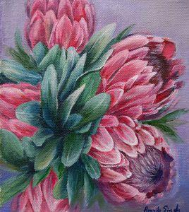 Protea star