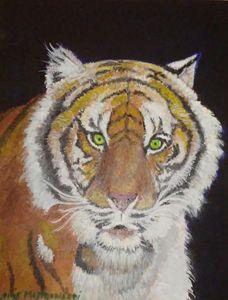 Tiger on canvas