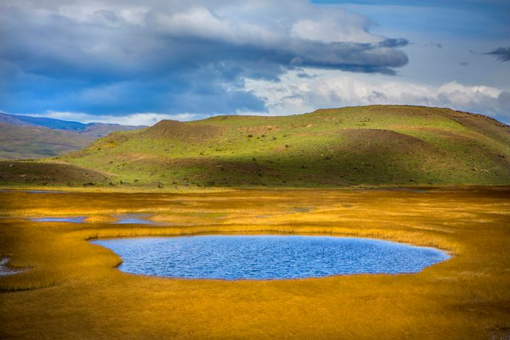 Patagonian Grassland - Dave Hare Photography