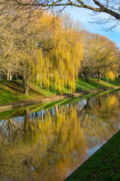 Canal Reflections - Dave Hare Photography